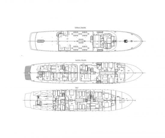 MS Apolon Deckplan